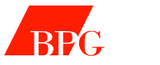 271 buccini pollin group inc