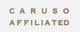 348 caruso affiliate holdings inc
